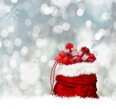 Leveranser Under Jul Och Nyår 2020